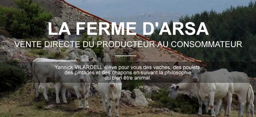 Vente directe du producteur au consommateur : Yannick Vilardell élève pour vous du veau et du boeuf BIO, des poulets, des pintades et des chapons en suivant la philosophie du bien être animal.
